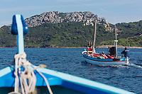 Europe/Provence-Alpes-Côte d'Azur/83/Var/Iles d'Hyères/Ile de Porquerolles:Départ à la pêche sur le pointu de Gérard Genta, pêcheur et restaurateur: Restaurant du Pêcheur - Hôtel Le Porquerollais  <br /> Auto N°:2012-418