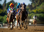 February 06, 2021: Moonlight d'Oro with Flavien Prat wins the Las Virgenes Stakes at Santa Anita Park in Arcadia, California on February 6, 2021. Evers/Eclipse Sportswire/CSM