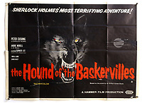 BNPS.co.uk (01202) 558833. <br /> Pic: Ewbank'sAuctions/BNPS<br /> <br /> Pictured: This The Hound of the Baskervilles poster sold for £1,875. <br /> <br /> A selection of classic horror and sci-fi film posters have sold for £85,000.<br /> <br /> The marquee lot was a British quad 30ins by 40ins poster for Forbidden Planet which fetched £12,000, three times its estimate.<br /> <br /> It features the memorable first image of Robby the Robot holding a damsel in distress.<br /> <br /> A poster promoting the Christopher Lee film Dr Terror's House of Horrors (1965) also outperformed expectations, selling for £2,750, while one advertising the first Star Wars film (1977) fetched £4,750.<br /> <br /> The posters, which were consigned by different collectors, sparked a bidding war with Ewbank's Auctions, of Woking, Surrey.