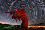 Startrails over sculptures of animals that once roamed the land by Chris Matthew Brady