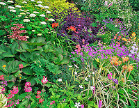 Flower gardens at Northwest Garden Nursery. Eugene, Oregon.
