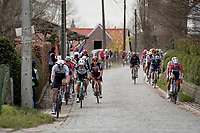 peloton up the Taaienberg<br /> <br /> 64th E3 Classic 2021 (1.UWT)<br /> 1 day race from Harelbeke to Harelbeke (BEL/204km)<br /> <br /> ©kramon