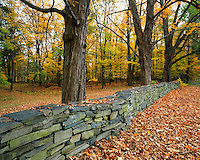 USA, New York, Hand built stone fence located in Greene County
