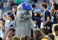 HOOVER, AL - DECEMBER 09, 2012: Mascot of Georgetown University during the NCAA 2012 Men's College Cup championship, at Regions Park, in Hoover , AL, on Sunday, December 09, 2012.