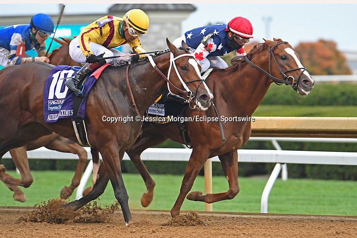 October 10, 2020: #6 Mr Freeze, trained by Dale Romans, wins the Hagyard Fayette (G2) over #10 Aurelius Maximus at Keeneland on October 10, 2020 in Lexington, KY. Jessica Morgan/ESW/CSM
