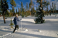 A CROSS COUNTRY SKIIER crosses a snowy meadow in the THREE SISTERS WILDERNESS  of the CASCADES - SISTERS, OREGON