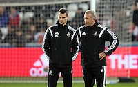 SWANSEA, WALES - MARCH 16: Alan Curtis of Swansea (R)<br /> Re: Premier League match between Swansea City and Liverpool at the Liberty Stadium on March 16, 2015 in Swansea, Wales