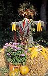Austria, Styria, harvest time: scarecrow at South-Styria
