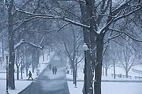 snow on Boston Common, Boston, MA