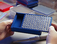Researcher holding a sample tray.