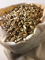 Organic Rye Grains - stock photos