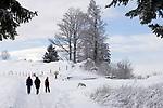 Schweiz, Kanton Schwyz, Kuessnacht: Winterspaziergang auf der Seebodenalp - 1000 m über dem Meer - ein beliebtes Ausflugs- und Wanderziel auch im Winter | Switzerland, Canton Schwyz, Kuessnacht: winter walk at Seebodenalp, popular place of excursions and hiking