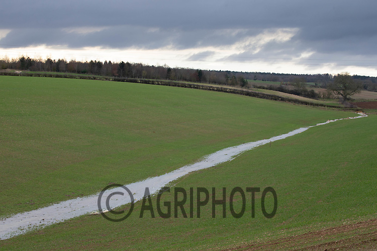5-2-2021 Flood water passing through a drilled field  <br /> ©Tim Scrivener Photographer 07850 303986<br />      ....Covering Agriculture In The UK....