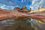 Reflections, White Pocket, Vermillion Cliffs National Monument, Paria Plateau, Arizona