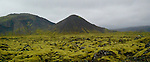 Lava field on South coast of Iceland.  (Bob Gathany)