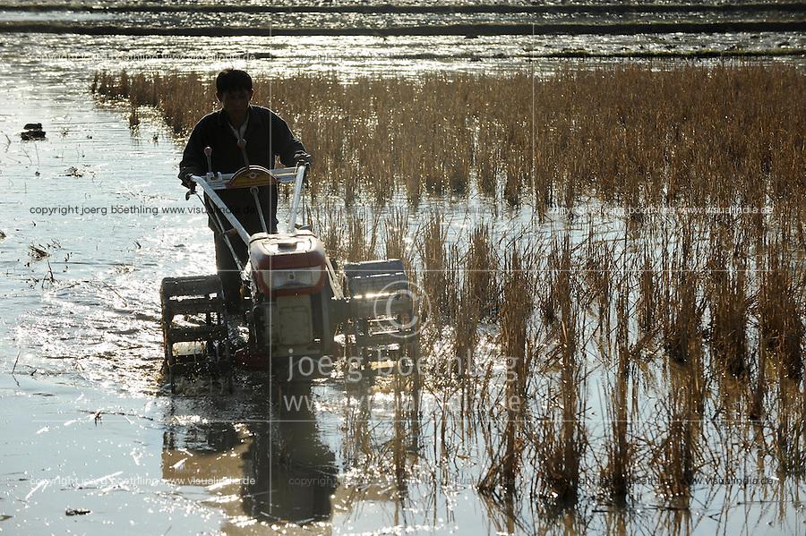LAOS, Dist. Sang Thong, ploughing of paddy field with hand tractor / LAOS Dist. Sang Thong, Reisanbau, Vorbereitung der Felder fuer den Reisanbau, Pfluegen der Felder mit Handtraktor dem sogenannten Eisernen Bueffel