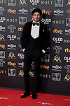 Andres Velencoso attends to 33rd Goya Awards at Fibes - Conference and Exhibition  in Seville, Spain. February 02, 2019. (ALTERPHOTOS/A. Perez Meca)