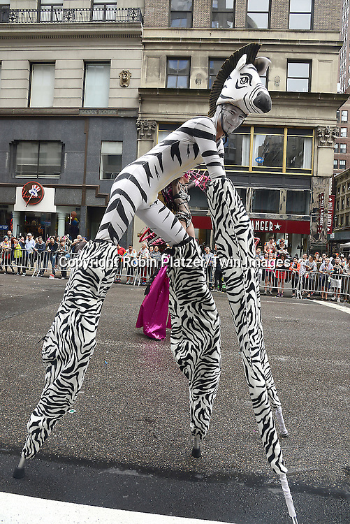 George Peele dressed as a Zebra attends the 2015 NYC Pride March on June 28, 2015 on Fifth Avenue in New York City. <br /> <br /> photo by Robin Platzer/Twin Images<br />  <br /> phone number 212-935-0770
