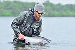 Steelhead/Salmon