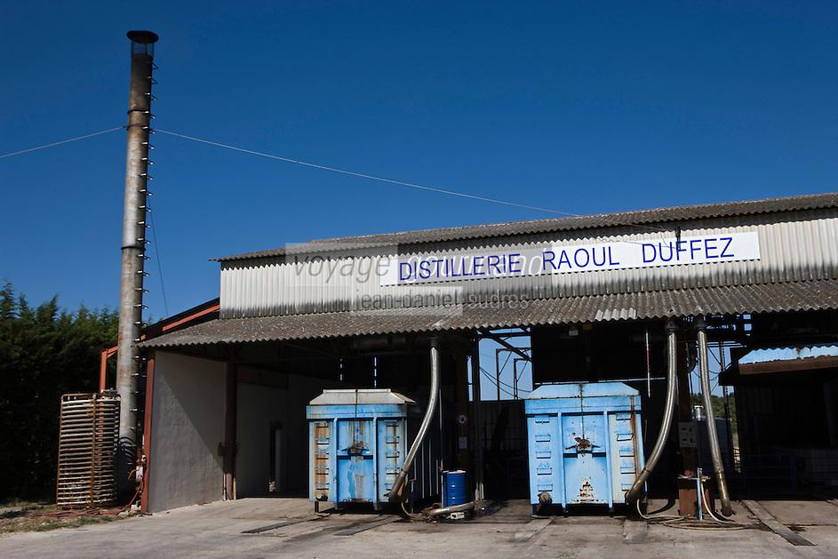 Europe/France/Rhône-Alpes/26/Drôme/Montségur-sur-Lauzon: Distillerie de Lavande Raoul Duffez