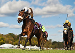 LAUREL, MARYLAND - OCTOBER 22: Phelp's Flash #10, ridden by Victor Carrasaco, wins the Maryland Million Turf Stakes on Maryland Million Day at Laurel Park on October 22, 2016 in Laurel, Maryland. (Photo by Scott Serio/Eclipse Sportswire/Getty Images)