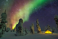 Glowing yellow tent on the snow in the Boreal forest of Interior, Alaska with the northern lights overhead.