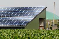 GERMANY agricultural farm with photovoltaic and Biogas plant at Nordstrand / DEUTSCHLAND , Maisfeld und<br /> Bauernhof Kurt Maart mit Photovoltaik und Biogasanlage mit Blockheizkraftwerk BHKW zur Strom- und Waermeerzeugung auf Nordseeinsel Nordstrand