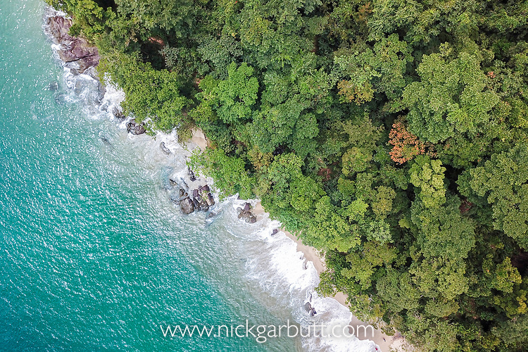 Lowland rainforest meets the sea (Indian Ocean). Masoala Peninsula / Bay of Antongil, north east Madagascar.