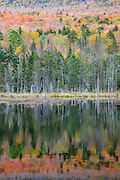 Autumn colors around a small pond along Cherry Mountain Road in the White Mountains, New Hampshire USA
