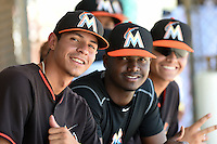 Miami Marlins Jorgan Cavanerio, Javier Lopez and Roy Morales (L-R) during a minor league spring training intrasquad game on April 2, 2015 at the Roger Dean Complex in Jupiter, Florida.  (Mike Janes/Four Seam Images)