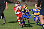 Junior  Rugby at Brightwater