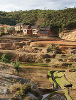 Houses and farmland in the hills near to the capital city Antananarivo, Madagascar