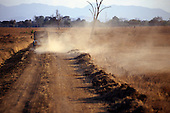 Mikumi, Tanzania. Four wheel drive Jeep leaving a cloud of dust on a dirt road.