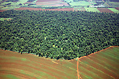 Parana State, Brazil. Mixed agriculture on previously forested land with remaining vestiges of forest.