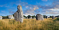 View of Carnac neolthic standing stones monaliths, Alignements de Kelescan, a pre-Celtic site of standing stomes used from 4500 to 2000 BC,<br /> <br /> Carnac is famous as the site of more than 10,000 Neolithic standing stones, also known as menhirs. The stones were hewn from local rock and erected by the pre-Celtic people of Brittany. The Carnac stones were erected during the Neolithic period which lasted from around 4500 BC until 2000 BC. One interpretation of the site is that successive generations visited the site to erect a stone in honour of their ancestors.