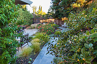 Side yard entry into small spaces backyard with flagstone walkway, Lundstrom Garden, design by Susan Morrison
