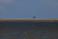 Do pequeno barracão construído com pau do mangue cobertos com folhas de açaizeiros  no lombo de pesca (banco de areia) o pescador Antônio Zeferino Santos Costa, 65 anos,  e sua companheira  Lúcia passam dias pescando nos mares de Curuçá,  foz do rio Amazonas.<br /> Curuçá, Pará, Brasil.<br /> Foto Paulo Santos<br /> 2017
