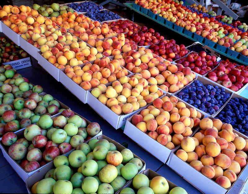 V00140M.tif   Rows of fruit for sale at Deterings Orchard, Oregon