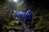 Tourists from cruise ships docking in Juneau sign up for different day trips.  This group of men hiked through the forest to see the Mendenhall glacier with Aurora and Jamie--Gastineau Tours.  It was a wet walk for the blue hooded tourists who tried to keep having a good time in the pouring rain with few views through the fog. Sometimes 5 or 6 cruise ships dock during the day increasing the city's population by 12,000 people.  They buy jewels, furs and memories of the Southeast Inside Passage. Many of the stories in the downtown are owned by the cruise ships.