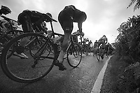 Kristian House (GBR) on a 26% (!) gradient<br /> <br /> 2013 Tour of Britain<br /> stage 5: Machynlleth to Caerphilly (177km)