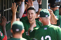 Left fielder Jordan Wren (3) of the Greenville Drive gets high-fives from teammates in the dugout after hitting a two-run home run in a game against the West Virginia Power on Sunday, May 19, 2019, at Fluor Field at the West End in Greenville, South Carolina. Greenville won, 8-4. (Tom Priddy/Four Seam Images)