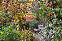 Bench at end of path in secret garden looking down shrub border Gary Ratway autumn garden