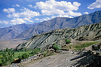 Farm in a desert with majestic mountains in the background, Ladakh, India.