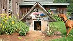 Seeling farm, Trout Run, PA. .Jeb's Dog house