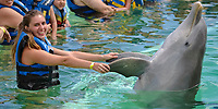 Girl dances with a bottlenose dolphin, Tursiops truncatus, at Sea Life Park, Oahu, Hawaii, USA