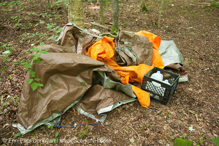 """Poor """"Leave No Trace"""" habits on the the side a Sawyer River Trail in the White Mountains, New Hampshire."""