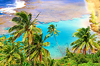 Kee Beach palm trees overlooking the turquoise coral reef and the Pacific Ocean, from Kalalau Trail, on the Na Pali coast in Kauai Island, Hawaii