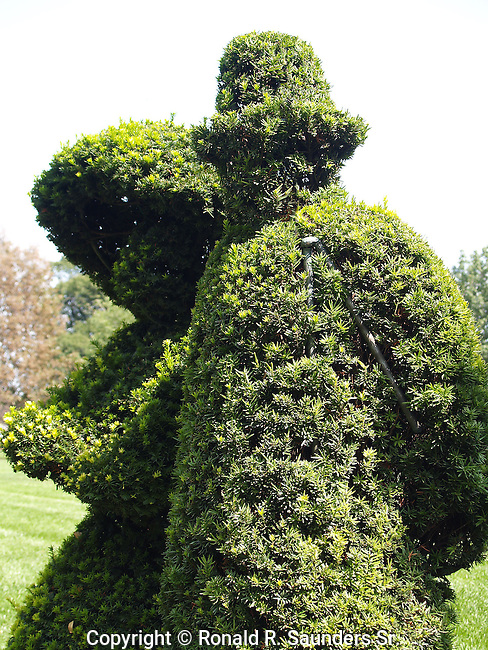 """A re-creation in sculpted shrubbery by French artist Georges Seurat's famous painting, """"A Sunday Afternoon on the Ile De La Grande Jatte.""""<br /> The topiary garden begun in 1989 by the Columbus Recreation and Parks Department,is a recreation in sculpted shrubbery of French artist Georges Seurat's famous painting, """"A Sunday Afternoon on the Ile de Grande Jatte"""" <br /> (1884-6).<br /> <br /> The topiary project was conceived, designed and executed by Columbus sculptor James T. Mason"""