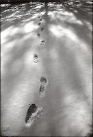 Footprints in snow<br />