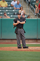 Umpire Sean Ryan handles the calls behind the plate during the game between the Salt Lake Bees and the New Orleans Baby Cakes at Smith's Ballpark on August 4, 2019 in Salt Lake City, Utah. The Baby Cakes defeated the Bees 8-2. (Stephen Smith/Four Seam Images)